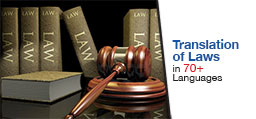 Law Translation